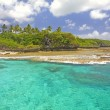 Coastline of Alofi, Niue, South Pacific. — Stock Photo #37903053