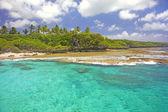 Costa do pacífico do sul de alofi, niue. — Foto Stock