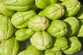 Green port of Chayote fruit. — Stock Photo