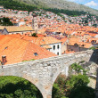 View from the city walls of the old town of Dubrovnik, Croatia. — Stock Photo