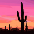 Mexican desert sunset with cactus. — Stock Vector #15323655