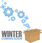 Abstract vector illustration of box and snowflakes. — Stock Vector