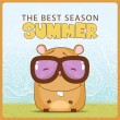 Summer vector card with cartoon hamster. - Stockvektor