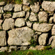 Постер, плакат: Drystone Wall Devon