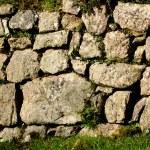 ������, ������: Drystone Wall Devon