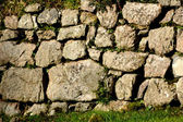 Drystone Wall, Devon — Stock Photo