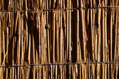 Texture of cane background — Stock Photo