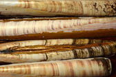 Modello marmo cannolicchi — Foto Stock
