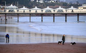 Paignton Pier, Devon, England — Stock Photo