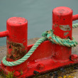 Red Bollards at Harborside with blue ropes — Stock Photo #18342217