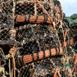 Lobster Pots — Stock Photo #19678501