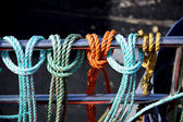 Coloured Ropes — Stock Photo