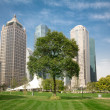 China Shanghai Pudong urban green space — Stock Photo
