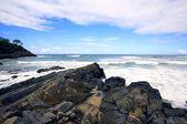 Avustralya noosa kıyı şeridi — Stok fotoğraf