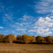 Prairie autumn scenery — Stock Photo