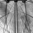Brooklyn Bridge - fisheye, black and white — Stock Photo #14010223