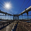 Fisheye - Brooklyn Bridge - Stock Photo