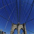 Brooklyn Bridge - Fisheye - Stock Photo