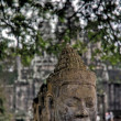 Stock Photo: Head of Buddhin Angkor, Cambodia