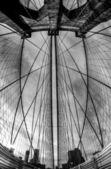 Brooklyn Bridge - fisheye, black and white — Stock Photo