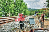 Bukit Timah tracks, Singapore — Stock Photo