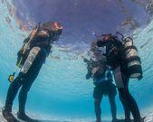 Inlärningsförmåga dykning i poolen — Stockfoto