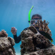Underwater scuba diving — Stock Photo