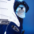 A dog with an electric guitar — Stock Photo