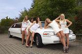 Fem vackra flickor nära limousine — Stockfoto