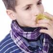 Stock Photo: Little boy eating an apple