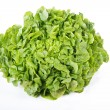 Stock Photo: Cabbage on white background