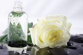 Rosa gialla con olio da massaggio e zen pietre — Foto Stock