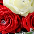 Stock Photo: Roses with Diamonds