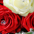 Roses with Diamonds — Stock Photo