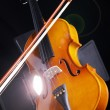 Violin on a dark background — Stock Photo