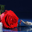 Rose with a shoe — Stock Photo #28512661