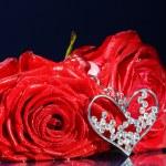 Rose with jewel — Stock Photo