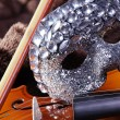 Fiddle with mask — Stock Photo #28512699