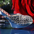 Rose with a shoe — Stock Photo #28512809