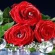 Rose with Diamond — Stockfoto