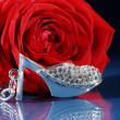 Rose with a shoe — Stock Photo