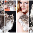 Collage with a red-haired girl with hairy cat — Stock Photo