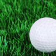 Golf ball in the grass — Stock Photo