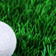 Golf ball in the grass — Stock Photo #28515387