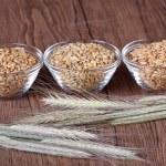 germes de trigo — Foto Stock