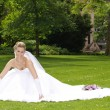 Wedding set in park — Stockfoto