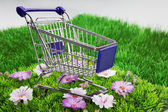 Shopping cart in the grass — Stock Photo