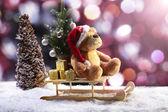 Christmas Bear in Sleigh — Stock Photo
