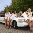 Five girls near limousine — Stock Photo #28527451
