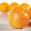 Oranges — Stock Photo #28531039